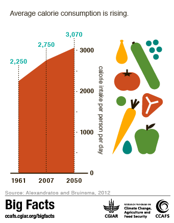 Food Production Africa In Tonnes