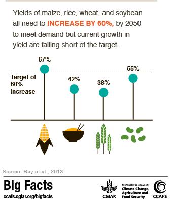 Food Security - Big Facts