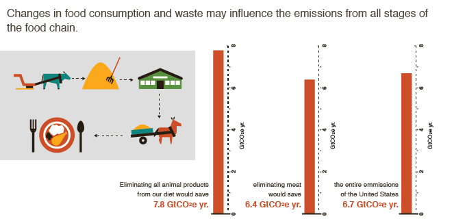 Mitigating Food Supply Chain Emissions Big Facts