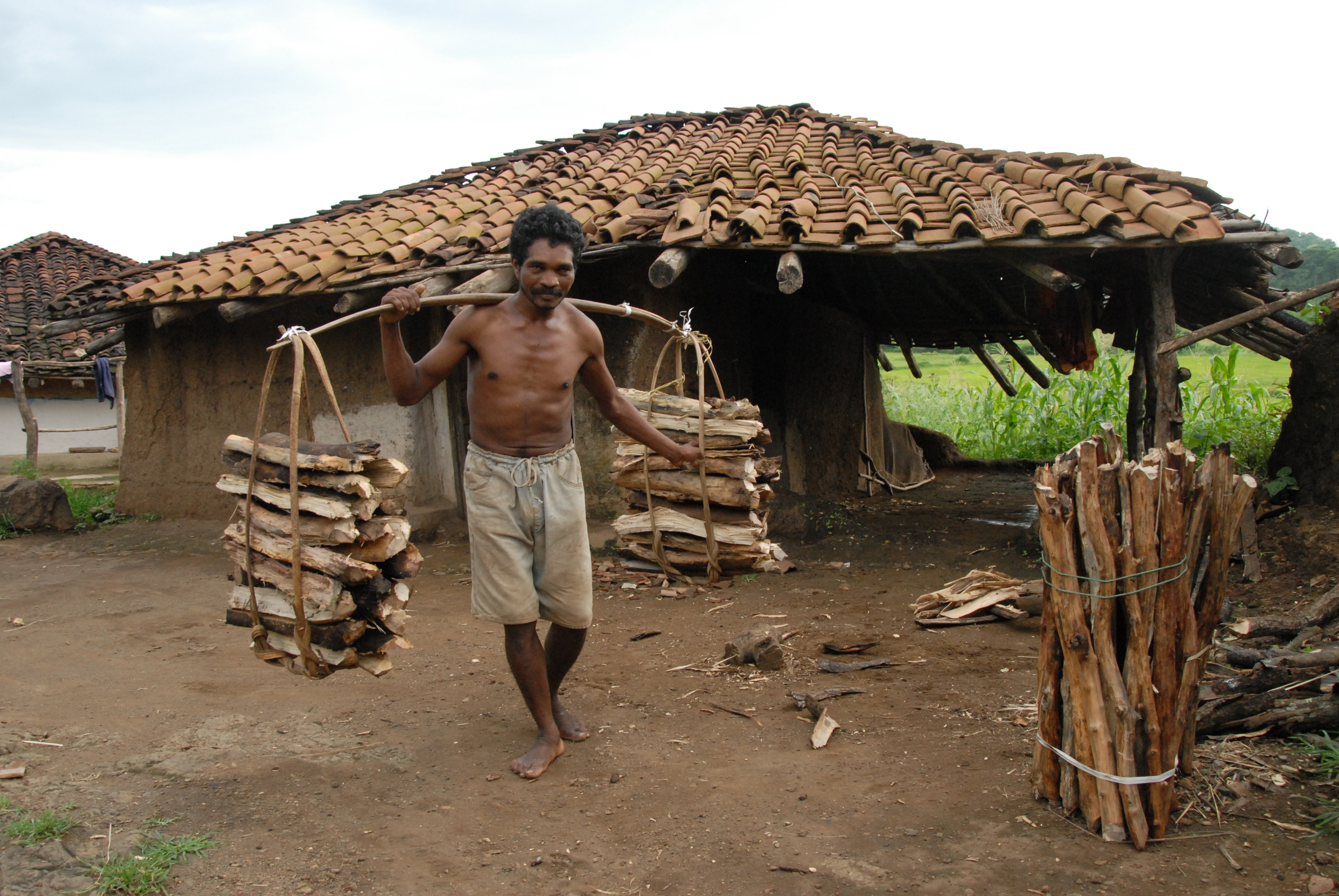 essay on rural livelihoods in india