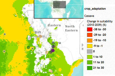 Suitability changes of cassava in Kiaranga village, Kenya. Click to explore this map.