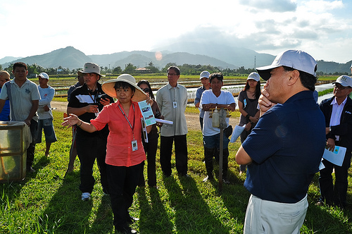 CCAFS and IRRI climate change agriculture researchers