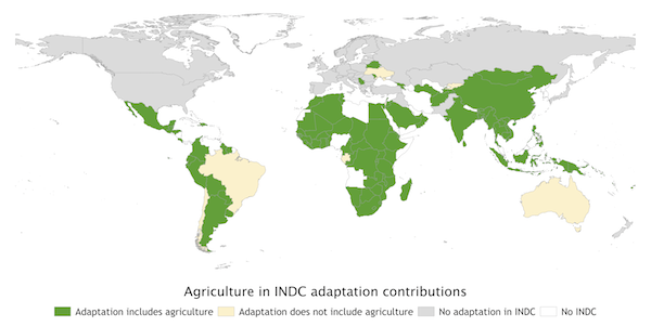 Agriculture in INDC adaptation contributions