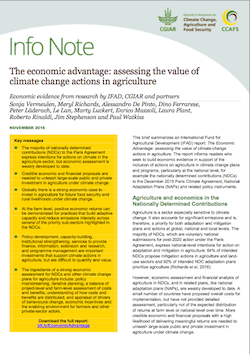 Info Note: the Economic Advantage