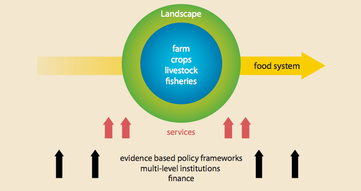 The main elements of climate-smart agriculture