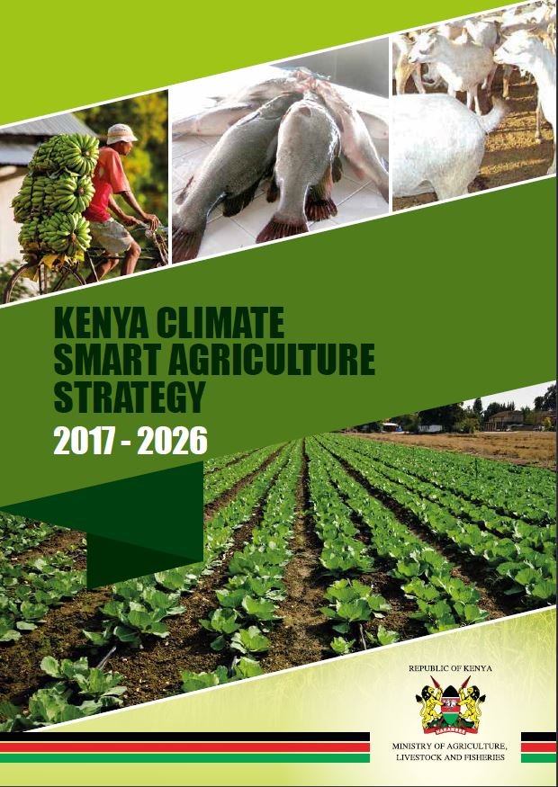 strategic plans for agricultural transformation in rwanda Kigali, (xinhua) --rwanda on thursday unveiled a six-year agriculture strategic plan that seeks to support the country's efforts to achieve food and.