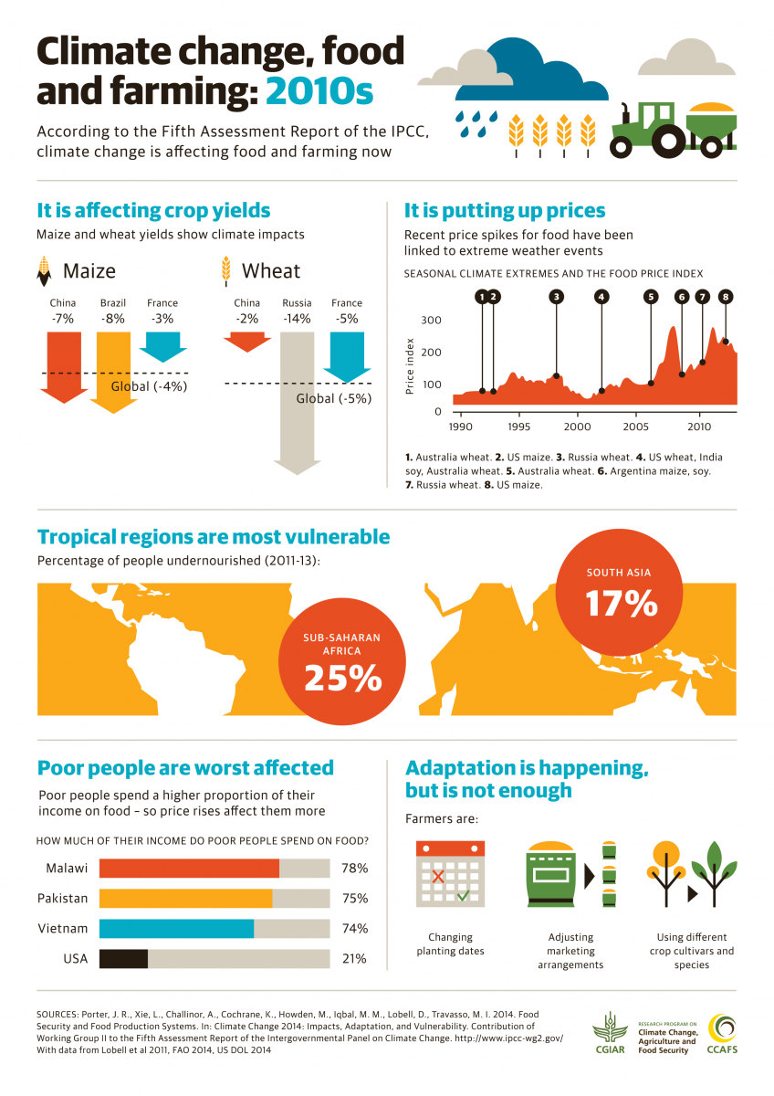 World Food Programme S Global Report On Food Crises