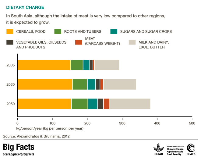 Changing Diets in South Asia. CCAFS Big Facts