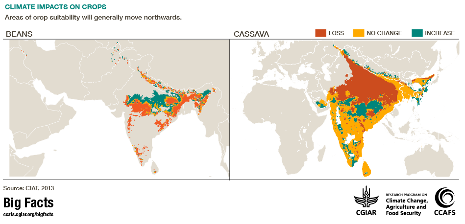 climate impacts crops CCAFS Big facts South Asia