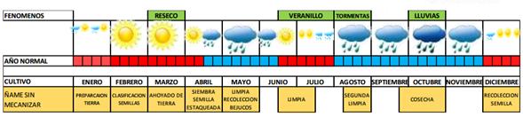 Ejemplo de calendario productivo diseñado en el plan predial de adaptación.