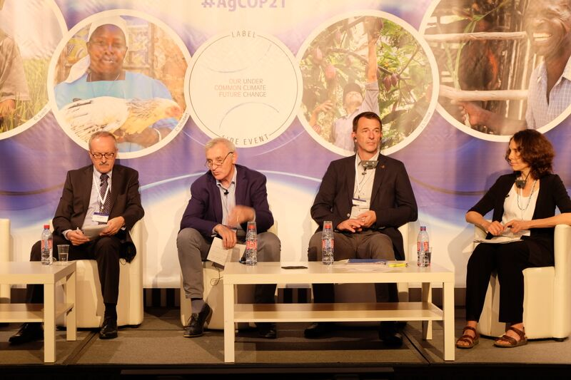 Panel discussion. Photo: C. Neglia, IFAD.