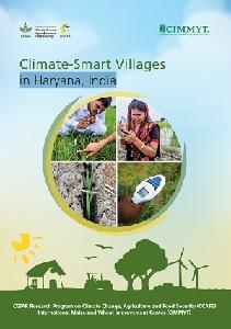 Climate-Smart Villages in Haryana, India | CCAFS: CGIAR