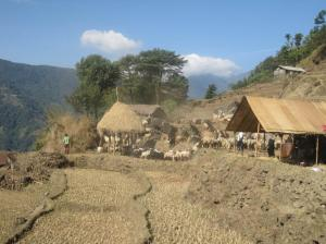 Photo: Transhumance system in Nepal Himalaya increasingly affected by changing climate.