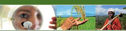 Commission on Sustainable Agriculture and Climate Change