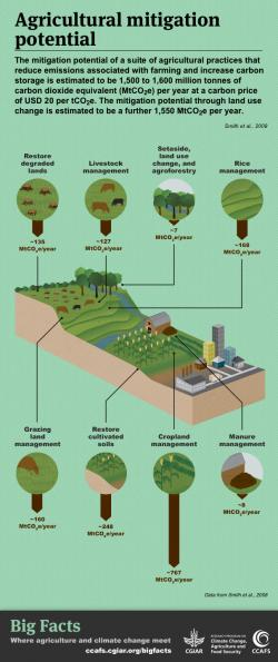 What is the potential for mitigating climate change in agriculture? Click to get the Big Facts.