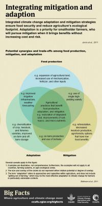 Get the Big Facts on links between adaptation and mitigation.