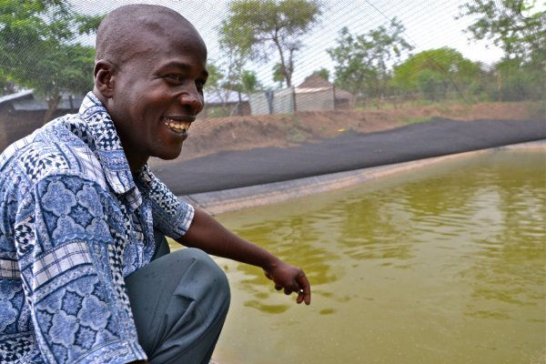 Fish farming in Nyando