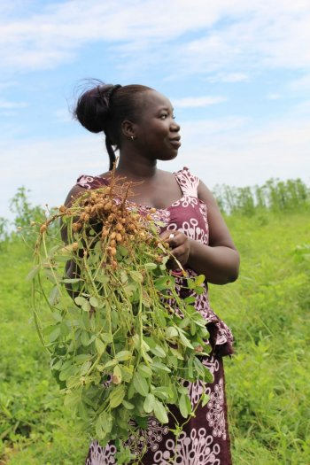 Mariama holds some groundnuts, which are nearly ripe for harvest. Photo: V. Meadu (CCAFS)