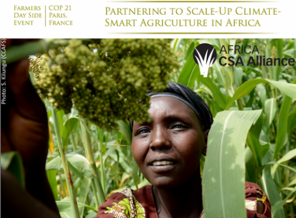 Partnering to scale-up climate-smart agriculture in Africa: from policy to tangible impact