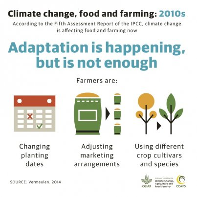 climat change and food security
