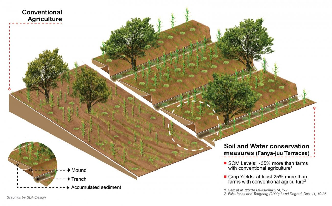 Terracing practice increases food security and mitigates for What does terrace farming mean
