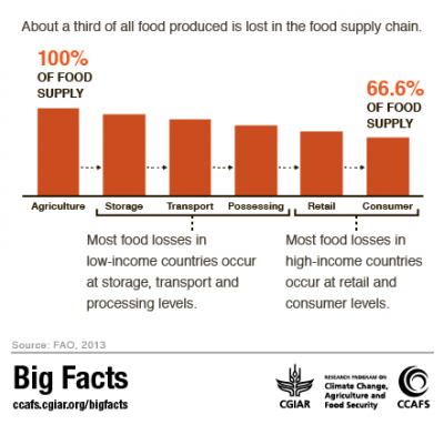 Food Waste along the food supply chain CCAFS Big Facts