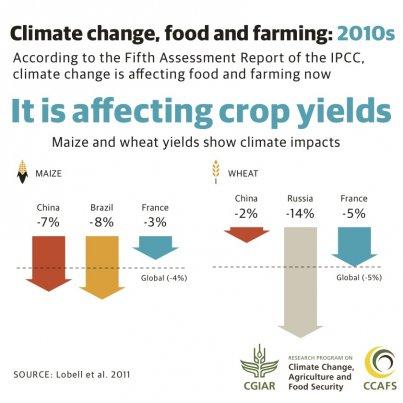 IPCC infographics