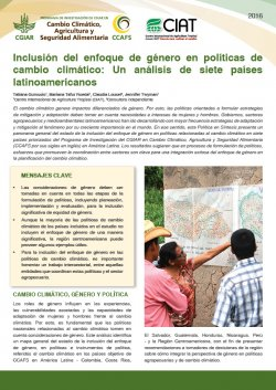 Download the policy brief (in Spanish)