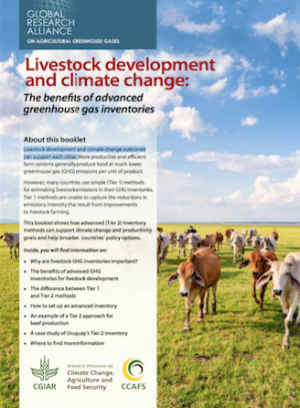 Livestock development and climate change