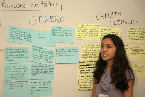Tatiana Gumucio facilitates the participatory definition of 'gender' Photocredit: Manon Koningstein (CIAT)