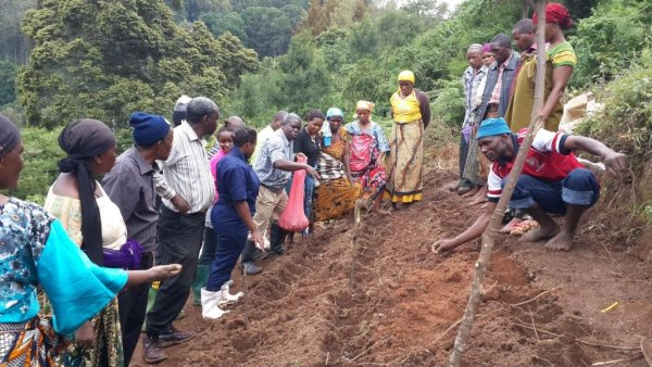 Action research  by potato farmers in Lushoto, Tanzania