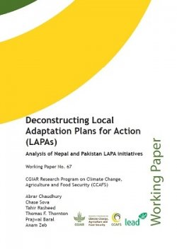 Deconstructing Local Adaptation Plans for Action (LAPAs)