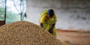 Pile of grain with a woman in the background