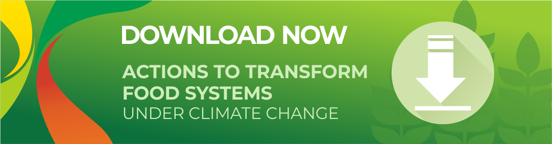 Download Now! Actions to Transform Food Systems under Climate Change